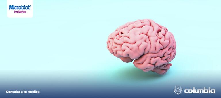 Eje intestino – cerebro