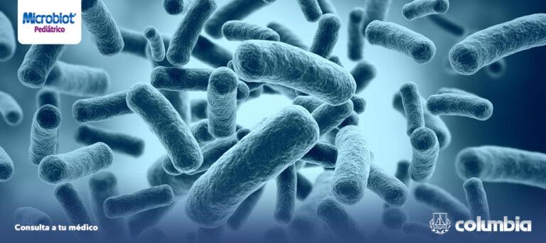 ¿Cuáles son las propiedades de los probióticos?