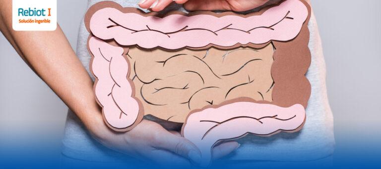 ¿Cómo mejorar la salud intestinal?